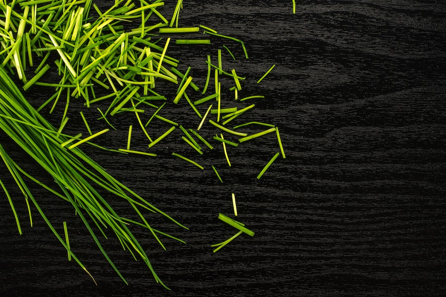 Fresh Chives Table Top Isolated On Black Wood Background Grass-like Leaves Fines Herbes